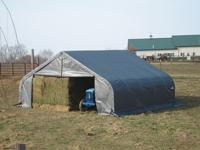 22x20x11 Peak Style Shelter